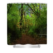 Trailside Bench Shower Curtain