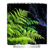 Trailside Plants Shower Curtain