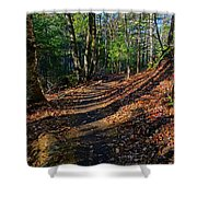 Train On The Adirondack Log Keene Valley Ny New York Shower Curtain