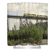 Train On Trestle Shower Curtain