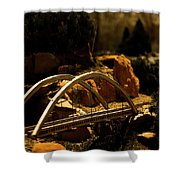 Train Trestle Shower Curtain