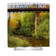 Train Trestle Shower Curtain by Michael Peychich
