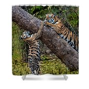 Training Session Shower Curtain