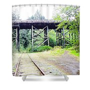 Trains Over And Under Shower Curtain