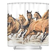 Trakehner Shower Curtain