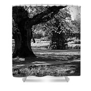 Tralee Town Park Ireland Shower Curtain