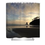 Tranquil Beauty Shower Curtain