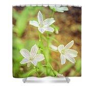 Tranquil Carolina Spring Beauty Shower Curtain