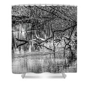 Tranquil May 2016 Bw Shower Curtain