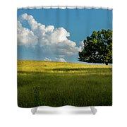 Tranquil Solitude Billowing Clouds Oak Tree Field Art Shower Curtain