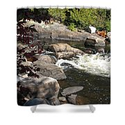 Tranquil Spot Shower Curtain