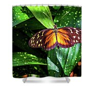 Tranquil Spots Shower Curtain