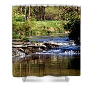 Tranquil Stream Shower Curtain