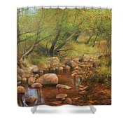 Transcarpatien Landscape Shower Curtain