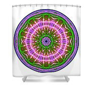Transition Fcircle Shower Curtain