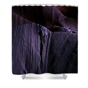 Transitions Shower Curtain