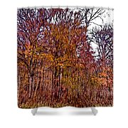 Transitions - Painterly Shower Curtain