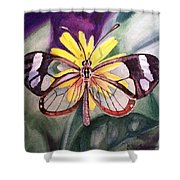Transparent Butterfly Shower Curtain