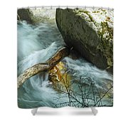 Trapped River Log Shower Curtain