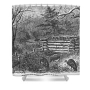 Trapping Wild Turkeys, 1868 Shower Curtain