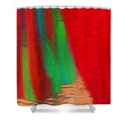 Travel Shopping Colorful Scarves Abstract Series India Rajasthan 1a Shower Curtain