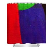 Travel Shopping Colorful Scarves Abstract Series India Rajasthan 1e Shower Curtain