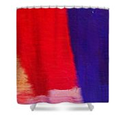 Travel Shopping Colorful Scarves Abstract Series India Rajasthan 1f Shower Curtain
