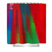 Travel Shopping Colorful Scarves Abstract Series India Rajasthan 1g Shower Curtain