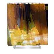 Travel Shopping Colorful Scarves Abstract Series India Rajasthan 1j Shower Curtain