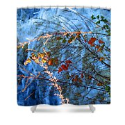 Life Currents Shower Curtain