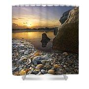Treasure Cove Shower Curtain by Debra and Dave Vanderlaan