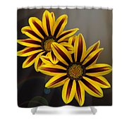 Treasure Flowers With Light Flares Shower Curtain