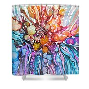 Treasures From Rainbow Reef Shower Curtain