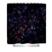 Treasures In Lace Shower Curtain