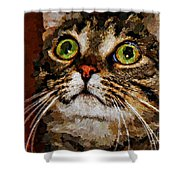 Treat Time Shower Curtain