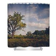 Tree 23 Shower Curtain