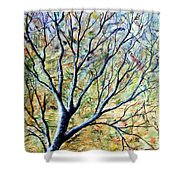 Tree 3 Shower Curtain