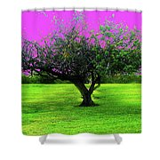 Tree And Color Shower Curtain