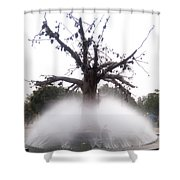 Tree And Fountain Shower Curtain