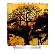 Tree And Her Shower Curtain