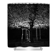Tree And Swing Shower Curtain