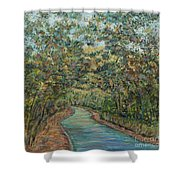 Tree Arched Road Shower Curtain