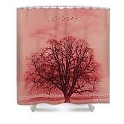Tree Art 01 Shower Curtain