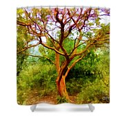 Tree At Kew Gardens Shower Curtain