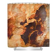 Tree Bark Collection # 49 Shower Curtain