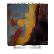 Tree Bark Collection # 51 Shower Curtain