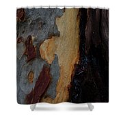 Tree Bark Collection # 52 Shower Curtain