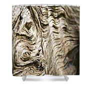 Tree Bark Shower Curtain