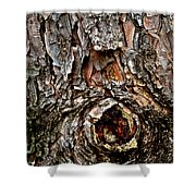 Tree Bark With Knothole Shower Curtain