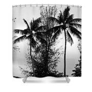 Tree Between The Trees Shower Curtain